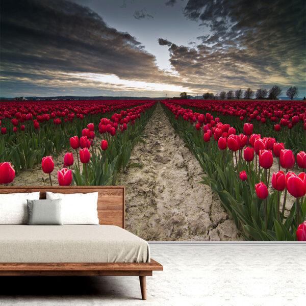 papel-de-parede-natureza-campos-03